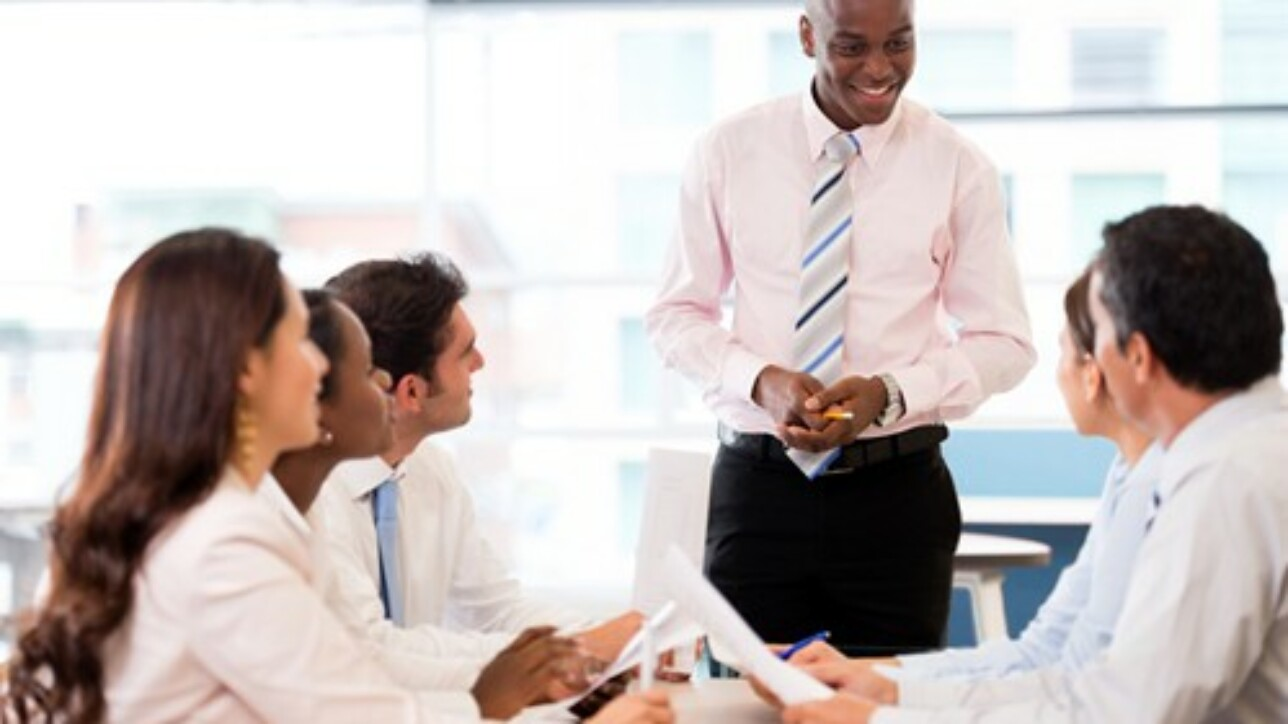 Team leaders are responsible for keeping ERP implementation goals on schedule.